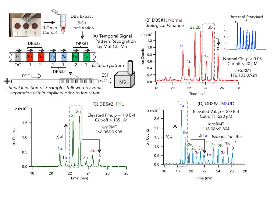 Figure 1-Targeted Metabolite Analysis