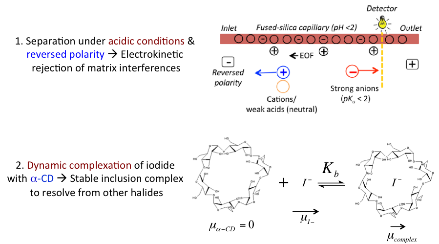 Figure 2-Separation and Ionization Theory