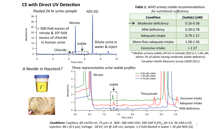 Figure 2-Targeted Metabolite Analysis